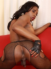 Hot black tgirl with a great body and shecock!